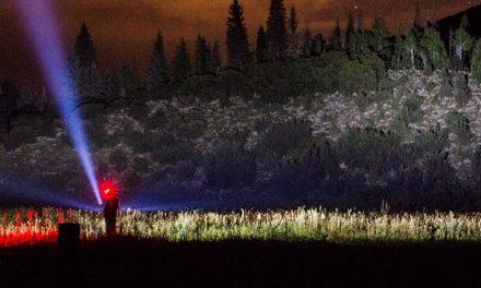 Colorado Perseids Meteor Jam Report