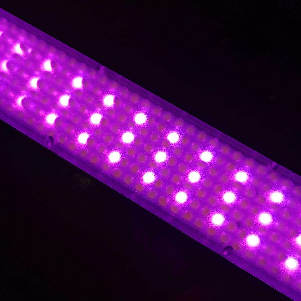 YN360iii RGB LEDs